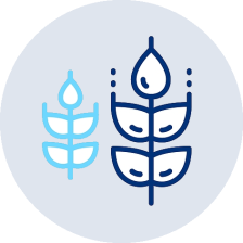 concept icon to illustrate the growth process of mentoring in digital marketing